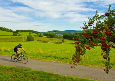 Cyklostezky kolem penzionu